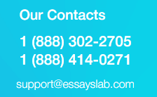 essayslab customer support