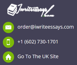 iWriteEssays.com Support